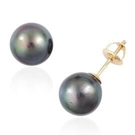 Exclusive Edition- ILIANA 18K Yellow Gold Very Rare AAAA Tahitian Pearl (Rnd 10-11mm) Ball Stud Earrings (with Screw Back)