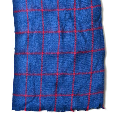 New For Season - Italian Designer Blue and Red Colour Checks Pattern Scarf with Fringes (Size 200x63 Cm)