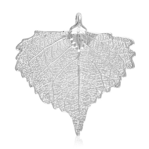 Real Cottonwood Leaf Pendant (Size 4 - 4.5 Cm) Dipped in Silver