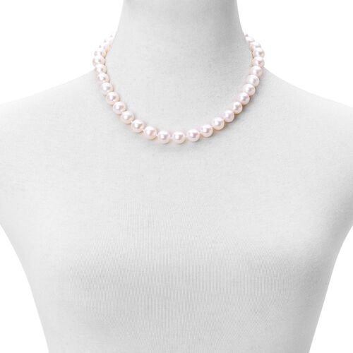 9K Y Gold AAAA Fresh Water High Lustre White Pearl (11-12 mm) Round Bead Necklace (Size 18 with 2 inch Extender)