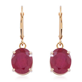 9K Y Gold AAA Rare Size African Ruby (Ovl) Lever Back Earrings 10.000 Ct.