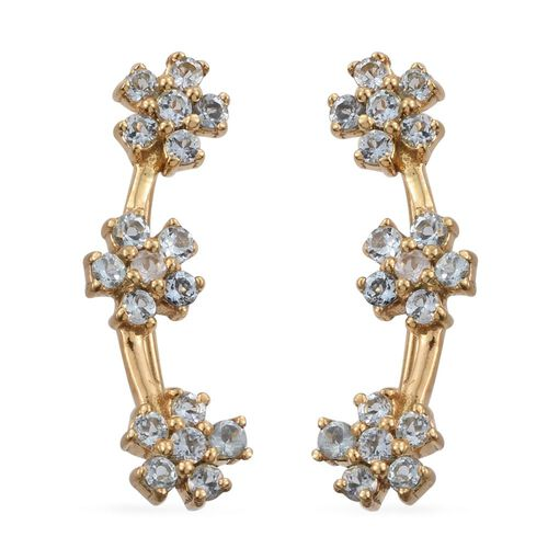 Espirito Santo Aquamarine 1 Carat Silver Floral Climber Earrings in Yellow Gold Overlay