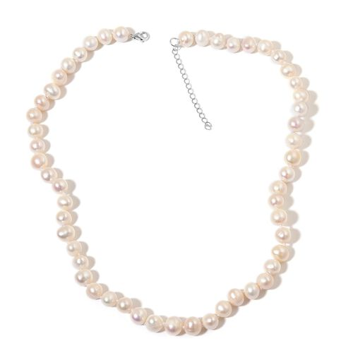 Fresh Water White Pearl (8-9mm) Necklace (Size 18) in Rhodium Plated Sterling Silver