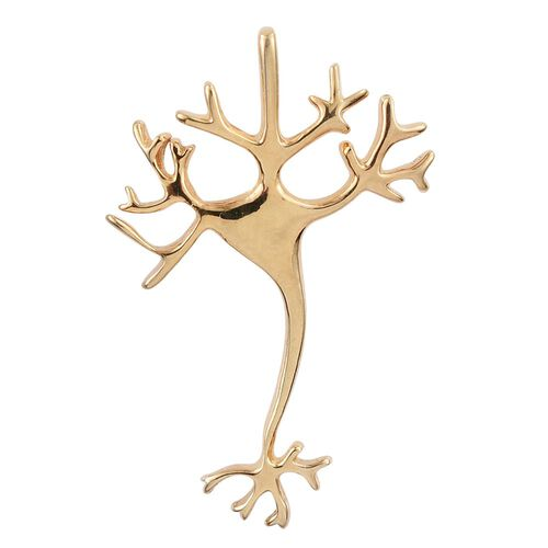 Science Jewellery - Dendritic Neuron Silver Pendant in Yellow Gold Overlay