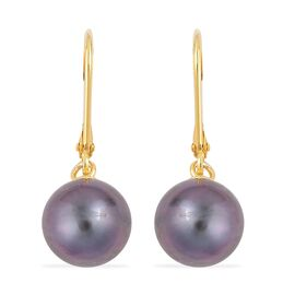 Limited Edition - Tahitian Pearl (Rnd 9.5-10mm) Lever Back Earrings in Yellow Gold Overlay Sterling Silver