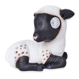 Black and White Colour LED Solar Lamb (Size 16X13.5X9 Cm)