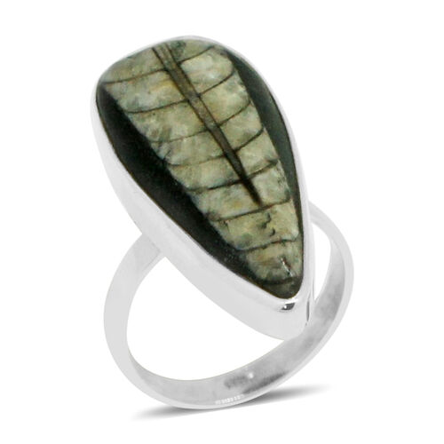 Tuscon Collection-Royal Bali  Orthoceras Ring in Sterling Silver 22.780 Ct.