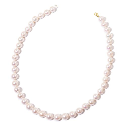 ILIANA 18K Y Gold AAAAA Very High Lustre Fresh Water White Pearl Necklace (Size 18)
