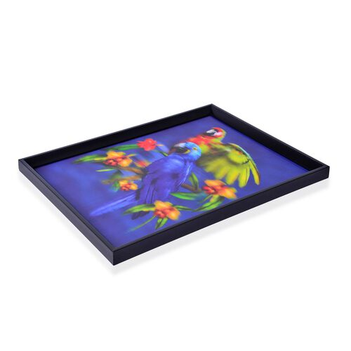 Wall Decor - Parrots Framed 4D Wall Painting (Size 41x31.5x2 Cm)
