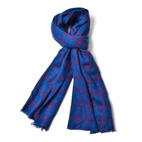 Close Out Deal  - Italian Designer Blue and Red Colour Checks Pattern Scarf with Fringes (Size 200x63 Cm)