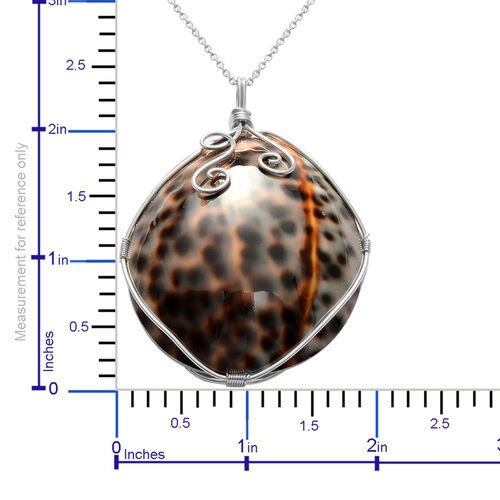 Shell Pendant With Chain in Stainless Steel