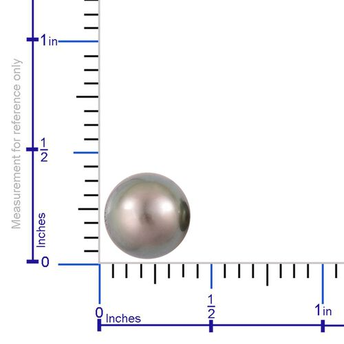Limited Available - RHAPSODY 950 Platinum AAAA Tahitian Pearl (Rnd 10-11mm) Ball Stud Earrings (with Screw Back)