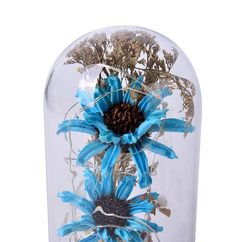 Blue Gerbera Daisy Flowers and Fallen Petals Preserved in Glass Dome with LED Lights (Size 20X10 Cm)