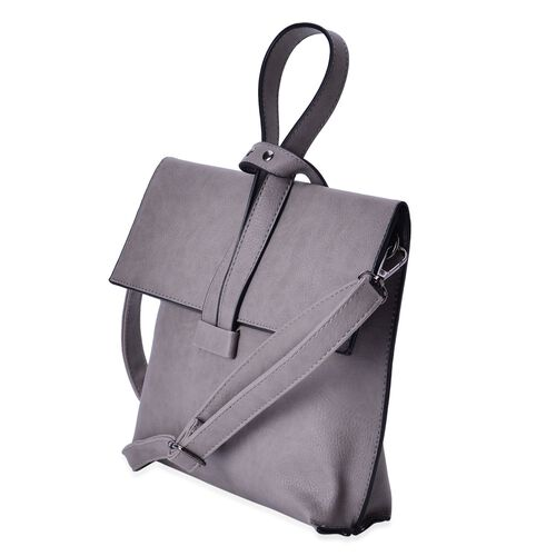 Sky Grey Colour Handbag with Adjustable and Removable Shoulder Strap (Size 24x19.5x6 Cm)