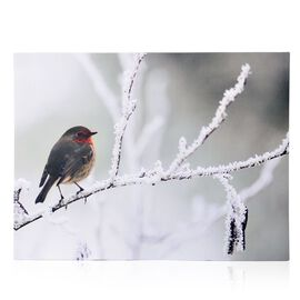 Snow and Bird Pattern Wall Art with LED Light (Size 40X30 Cm)