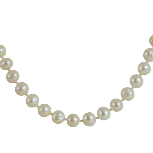 9K W Gold AAA Fresh Water White Pearl Necklace (Size 18 with 1 inch Extender)