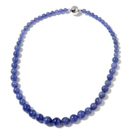 Signature Collection - Extremely Rare Tanzanite (Rnd 6-13mm) Graduated Necklace (Size 20) with Magnetic Clasp in Rhodium Plated Sterling Silver 366.500 Ct.