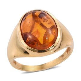 AAA Rare Size Amber (Ovl16x12) Solitaire Ring in 14K Gold Overlay Sterling Silver 3.500 Ct.