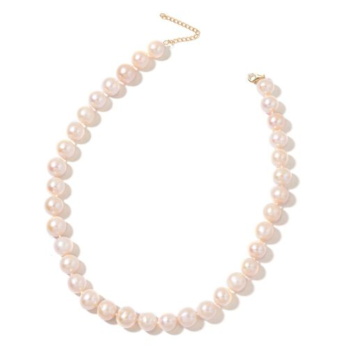Exclusive Edition- 9K Yellow Gold Top Lustre Premium AAAA Fresh Water White Pearl Necklace (Very Rare Size 12-13 mm) Size 18 with 2 inch Extender)