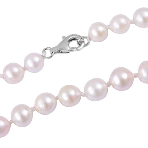 RHAPSODY 950 Platinum AAAA Japanese Akoya Pearl (Rnd) Necklace (Size 18)