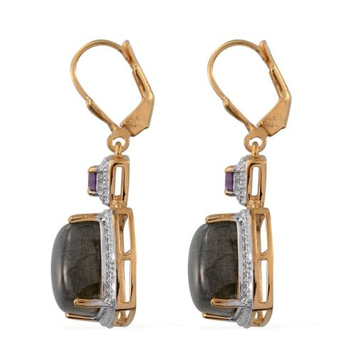 Labradorite (Cush), Amethyst Lever Back Earrings in 14K Gold Overlay Sterling Silver 14.300 Ct.