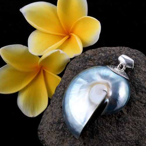 Royal Bali Collection One Time Tucson Mega Deal - Extremely Rare Ammonite Fossil Pendant in Sterling Silver 65.000 Ct.