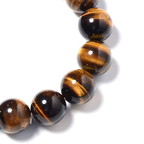 Tigers Eye (Rnd) Beads Stretchable Bracelet (Size 7) 321.000 Ct