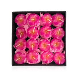 Set of 16 - Small Candles in Gift Box Plumeria Floral Aroma (Size 14.5x14.5x2.5 Cm) - Pink
