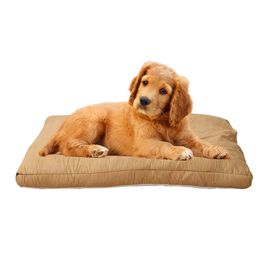 Light Brown Colour Faux Suede Dog Bed with Shredded Memory Foam Filling (Size 100x66 cm)