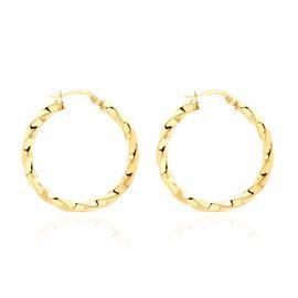 Twisted Creole Hoop Earrings in 9K Gold 1.80 Grams