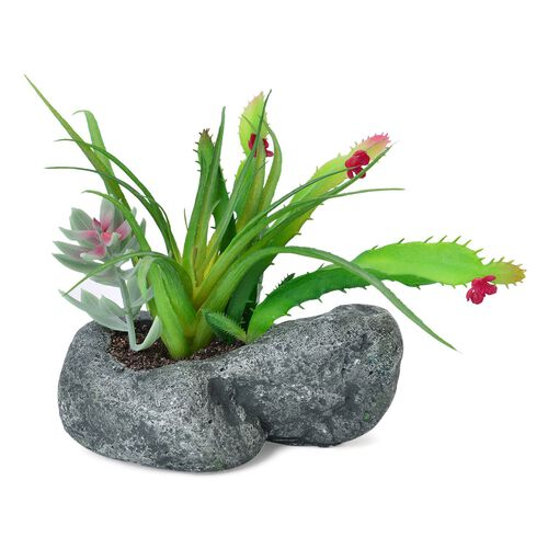 Home Decor - Artificial Cactus Plant with Flowers in Cement Pot (Size 13X10 Cm)