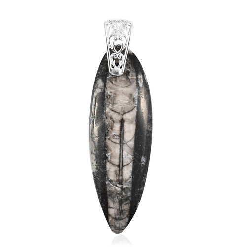 Orthoceras Pendant in Sterling Silver 100.00 Ct.