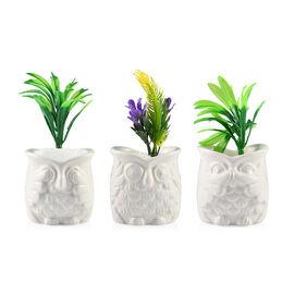 Home Decor - Set of 3 - Artificial Mini Plants in Ceramic Owl Pots (Size 6x4.5 Cm) - White