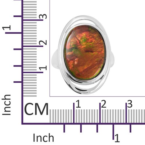 Canadian Ammolite (Ovl 18x13 mm) Ring in Rhodium Overlay Sterling Silver.