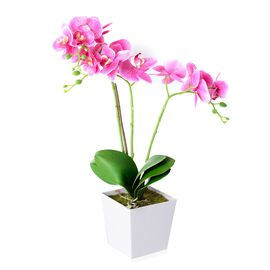 Home Decor Artificial Light Purple Butterfly Orchid Plant with Pot  (Size:50.5x12.5x12.5 Cm))