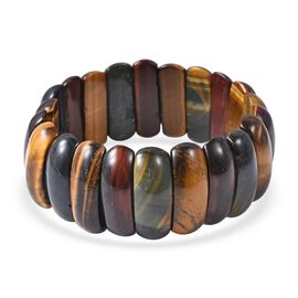 Multi Colour Tiger Eye (Cush) Stretchable Bracelet (Size 7) 324.50 Ct.