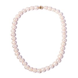 9K Yellow Gold AA High Lustre Freshwater White Pearl Necklace (Size 20)