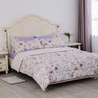 Serenity Night Comforter Set of 6 - Comforter (220x225cm), Fitted Sheet (150x200+30cm) and Pillow Ca