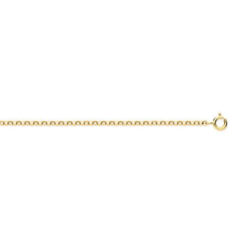 9K Yellow Gold Belcher Chain (Size 22)