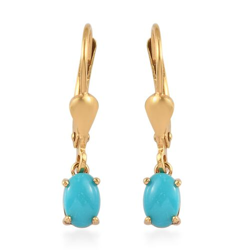 Arizona Sleeping Beauty Turquoise Solitaire Lever Back Earrings in 14K Gold Overlay Sterling Silver