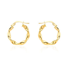 High Finish Twisted Creole Hoop Earrings in 9K Yellow Gold