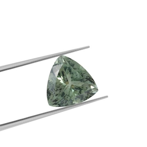 AAA Prasiolite Trillion 17 Faceted 13.50 Cts