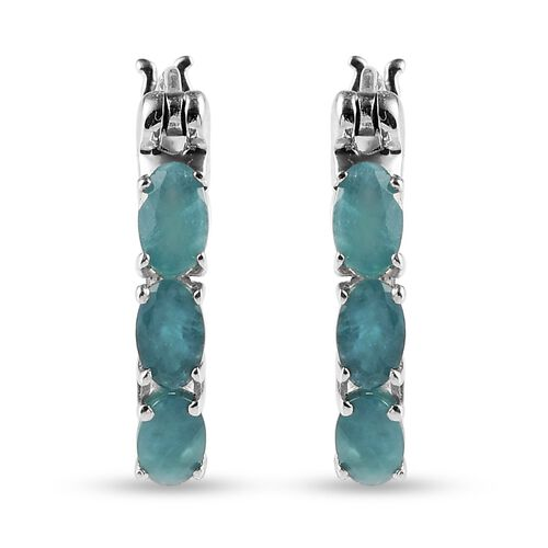 Grandidierite Earring in Platinum Overlay Sterling Silver 0.27 ct  1.250  Ct.