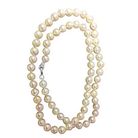 Close Out Deal-Japanese Akoya Pearl Necklace (Size 16) in Sterling Silver