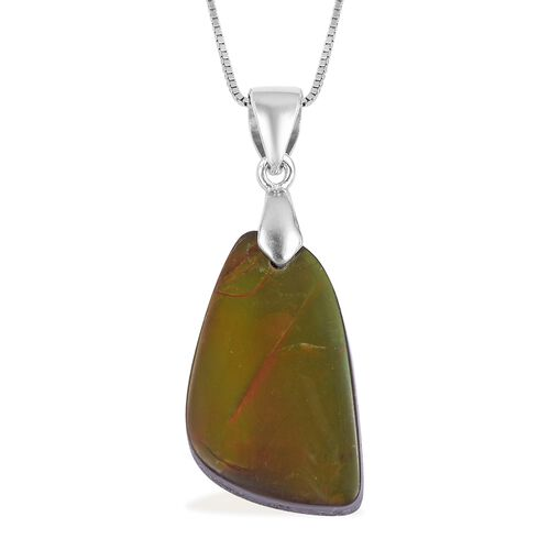 AA Canadian Ammolite Pendant with Chain in Rhodium Plated Sterling Silver