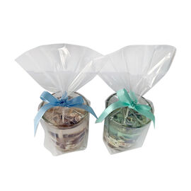 2 Piece Set - Brown and Green Seashell Candles in Glass (Size 5x5x5.5 Cm) - Seashells