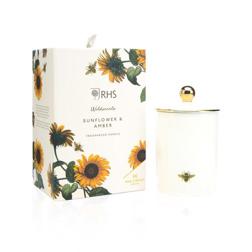 RHS - Wax Lyrical England - Luxury Soy Wax Porcelain Candle - Sunflower & Amber