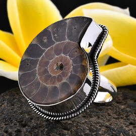 Royal Bali Collection - Ammonite Ring in Sterling Silver, Silver wt 4.90 Gms