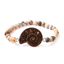 61.50 Ct Ammonite and Fossil Coral Stretchable Beaded Bracelet 7 Inch