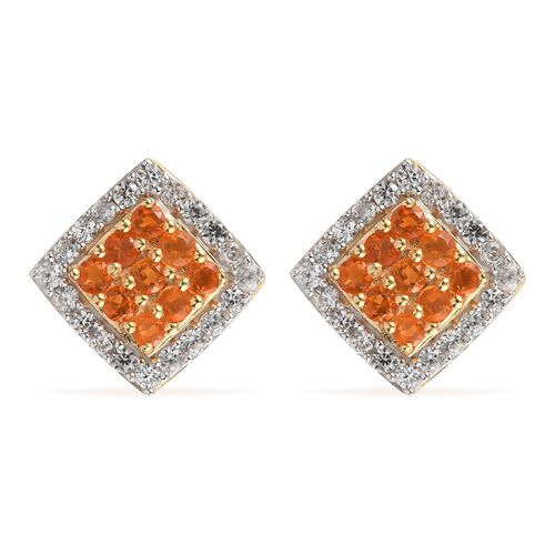 Jalisco Fire Opal and Natural Cambodian Zircon Stud Earrings (with Push  Back) in 14K Gold Overlay S